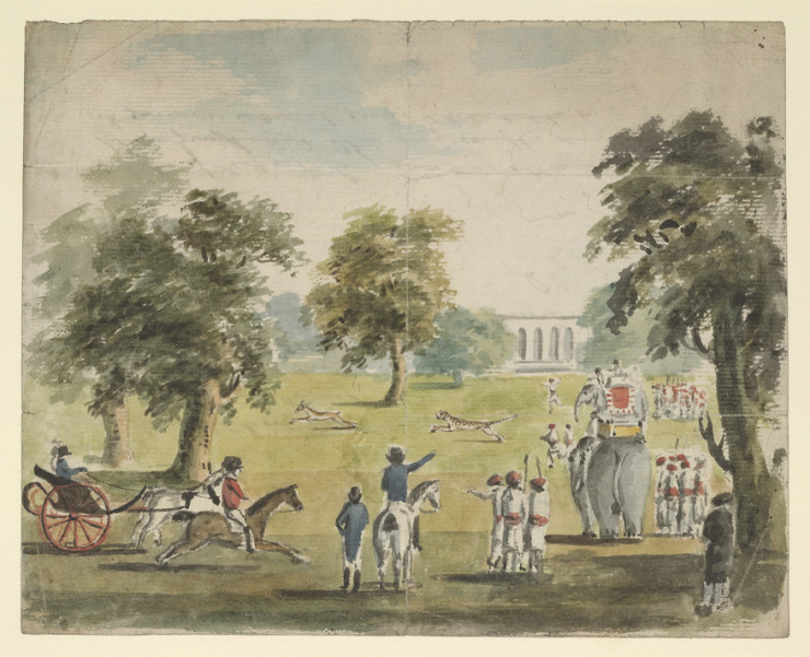 A Cheeta Hun in Wellesley's Park. Lithograph ( coloured ). Charles D'Oyly.1802. Courtesy: British Library